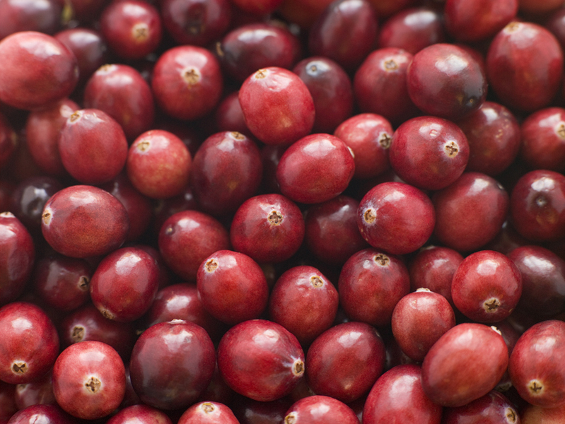Cranberry Juice for Preventing Recurring Urinary Tract Infections