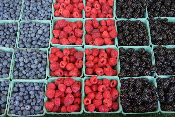Fresh, organically grown berries